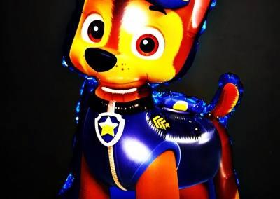 balony z helem na urodziny poznań psi patrol poznan plewiska