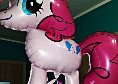 balony z helem poznań plewiska skórzewo dopiewo przeźmierowo komorniki (17)